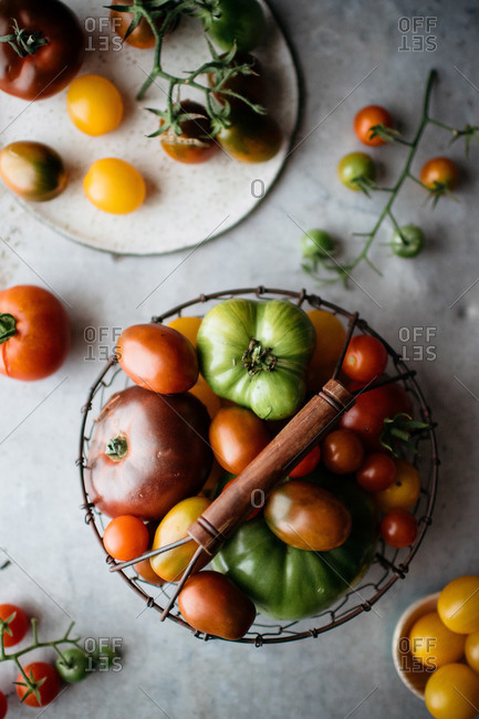 Various tomato varieties with wire basket