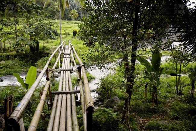 Bamboo bridge over a stream in Bali, Indonesia