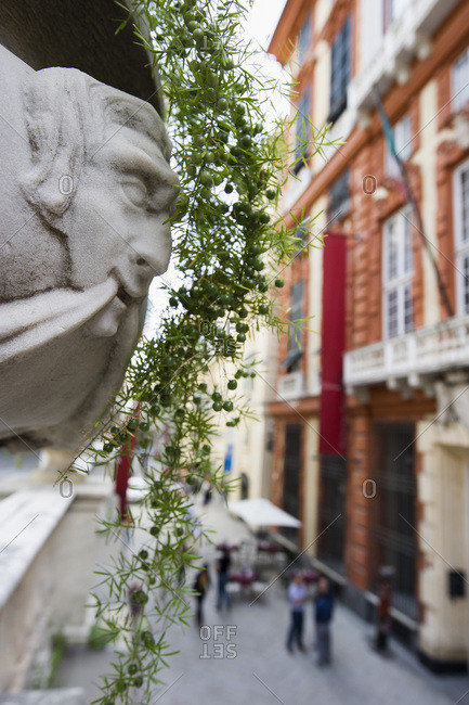 Close up of a planter outside of the Palazzo Rosso in Genoa, Italy