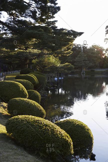 Manicured shrubs beside a pond at the Kenrokuen Garden, Japan