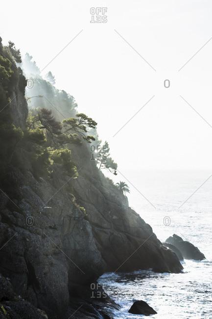 Cliffs in fog on the Italian Riviera