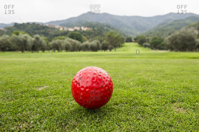 Red golf ball on a golf course