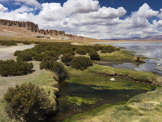 Tara Salt Flat, Salar de Atacama in San Pedro de Atacama, Antofagasta Region, Chile