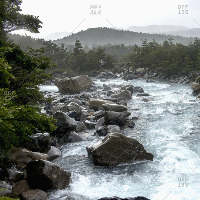 French River in French Valley, Torres del Paine National Park, Magallanes and Antarctica Chilena Region, Chile