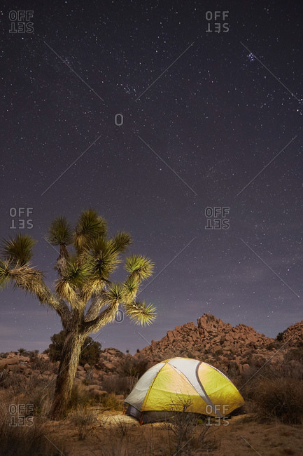 Camping tent in desert wilderness at night