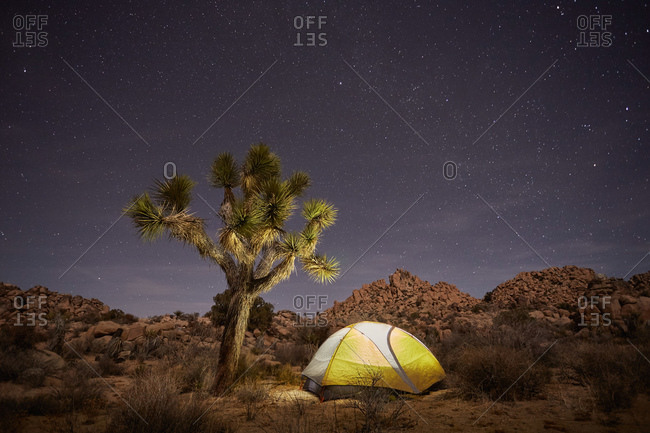 Tent in desert wilderness at night