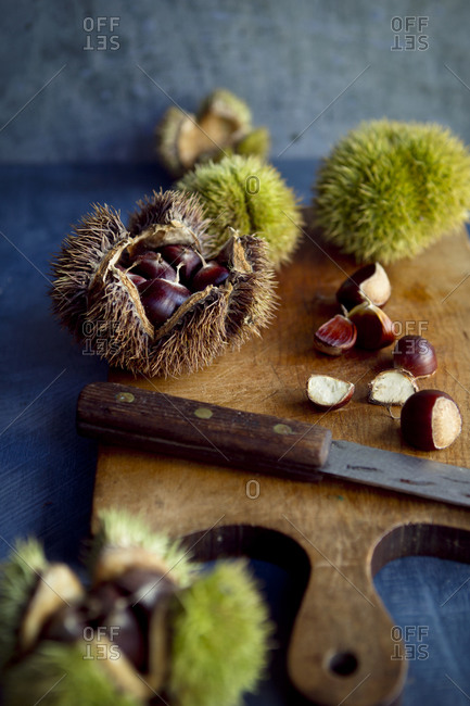 Opened chestnut husks and a knife on a cutting board