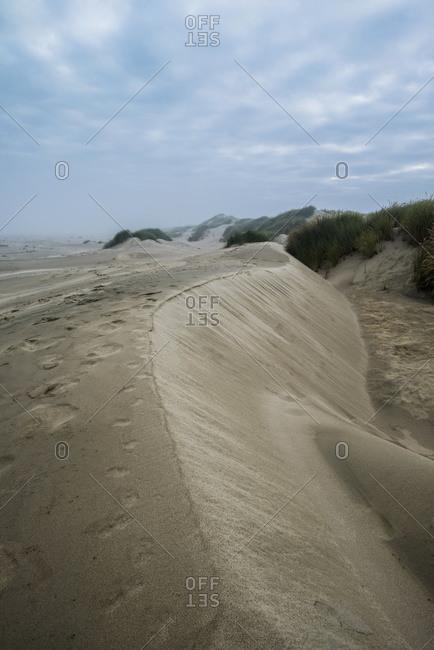 Eroded sand dunes in Oregon