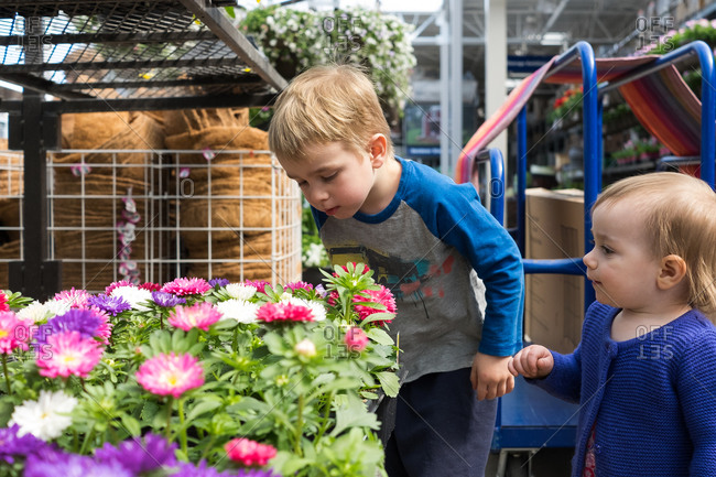 Little boy and girl smelling nursery flowers