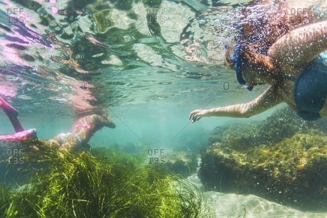 Women snorkel near Divers Cove in Laguna Beach, California