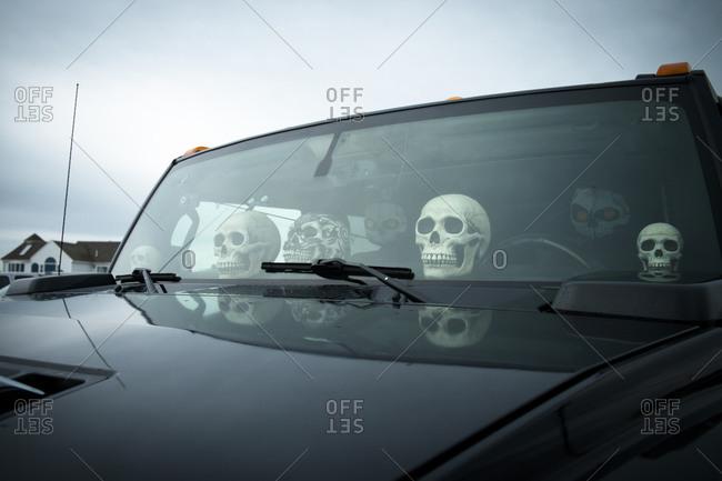 Skulls decorating a truck interior