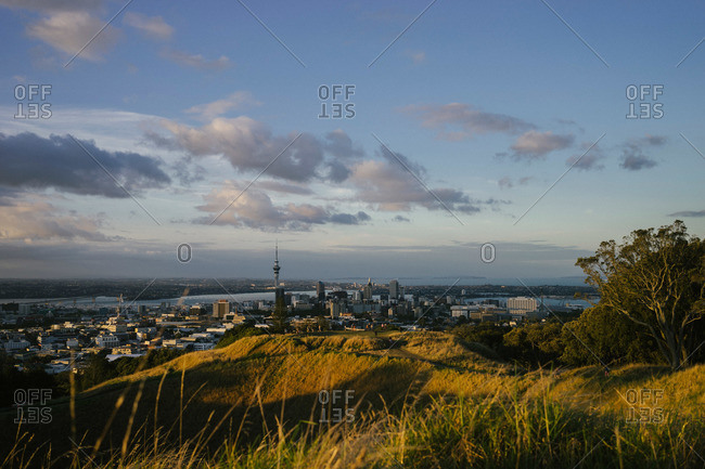 View of the Auckland, New Zealand skyline from Mount Eden