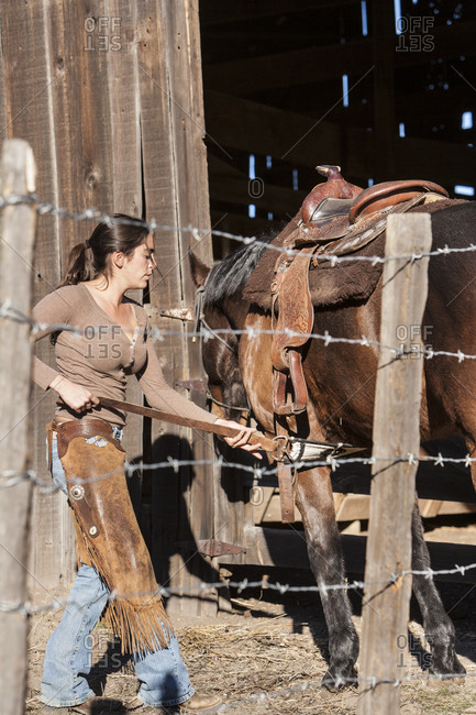 Horse wrangler putting saddle on a horse
