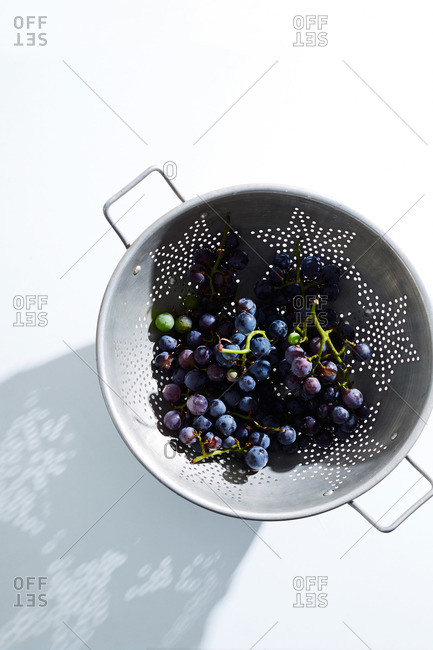 Concord grapes on the vine, in metal colander on white surface