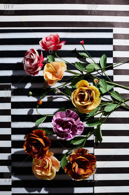 Hand crafted pink, purple and yellow paper flowers on black & white striped background