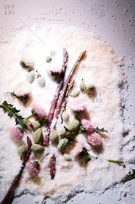 Pink thistle flowers, asparagus and raw almonds on coarse salt surface