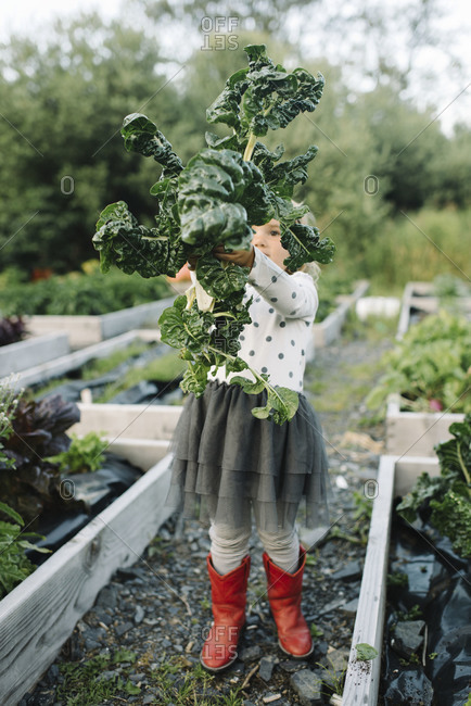 Girl with fresh kale in a garden