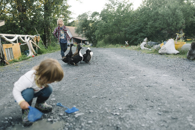 Children and pet ducks in their driveway