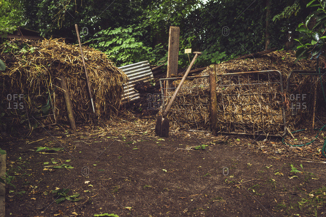 Hay in a country garden