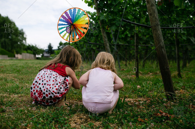 Girls with a pinwheel in a vineyard