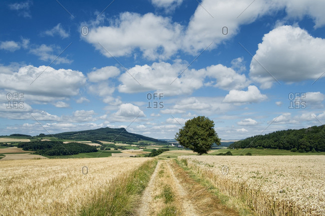 Cultivation at Hegau with Hohenstoffeln in the background, Constance district,
