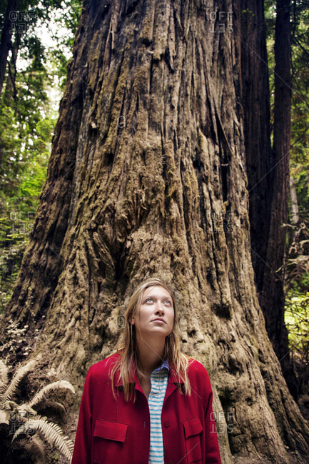 Woman standing in front of a large tree trunk