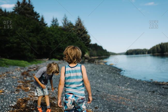 Two boys searching on a lake beach
