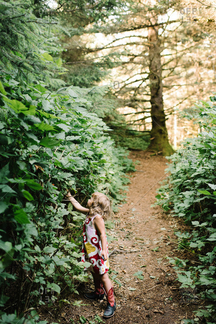 Little girl in forest picking berries