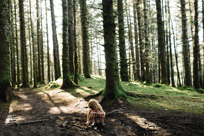 Girl exploring the ground in a forest