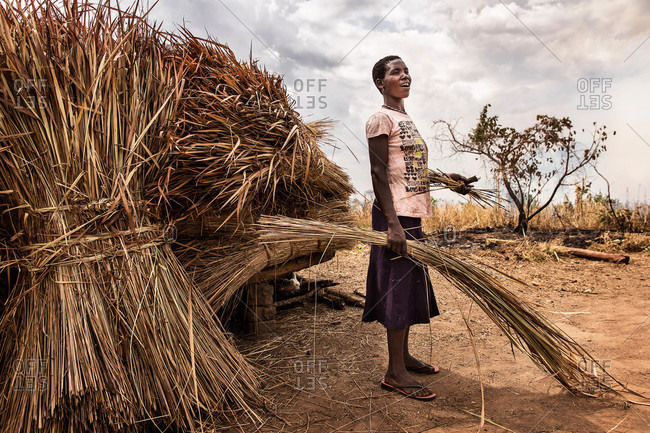 Palaro, Uganda - February 27, 2015: Young woman with bundles of straw