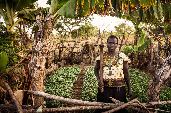 Omel, Uganda - March 3, 2015: Woman with a hoe standing in a garden