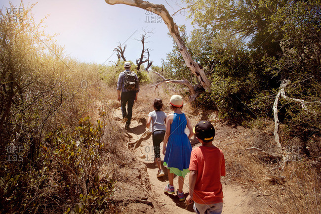Children on a hike with their father