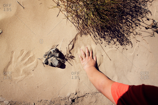 Child making handprints in the sand
