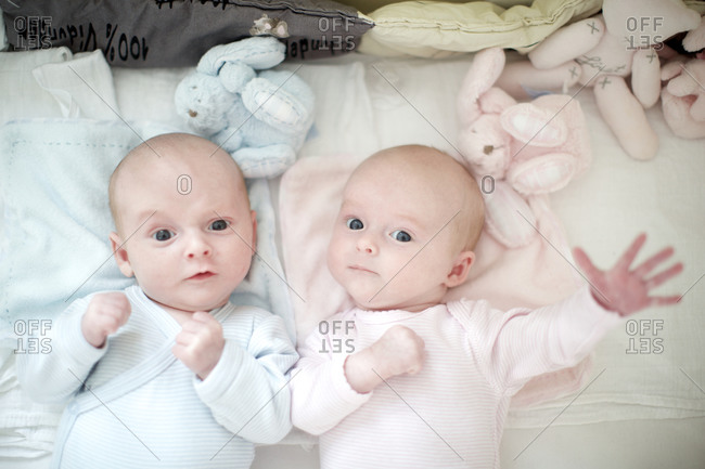 Twin babies looking up with curiosity