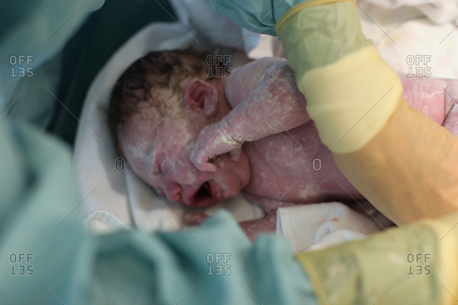 baby right after being born stock photo offset