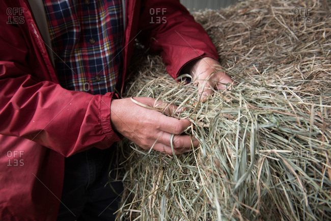 Farmer with a bale of hay