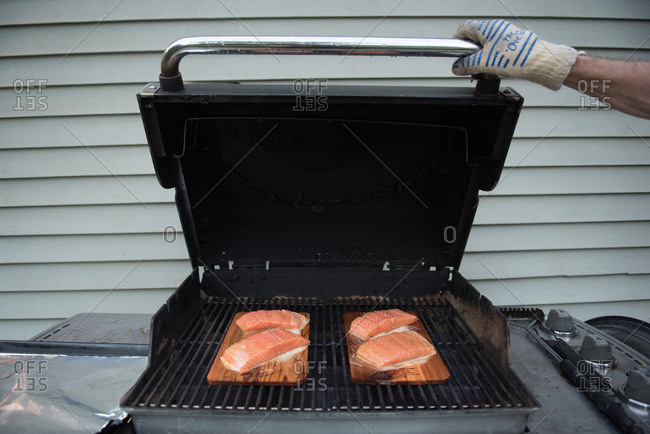 Hand closing grill with cedar planked salmon