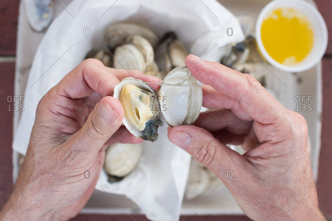 Hands opening a steamed clam