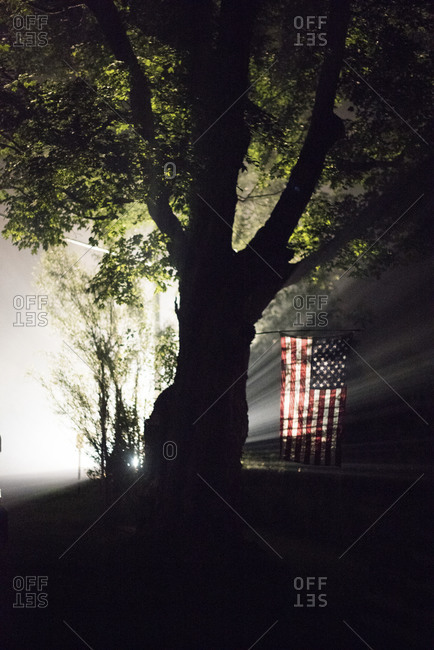 Tree and American flag lit at night