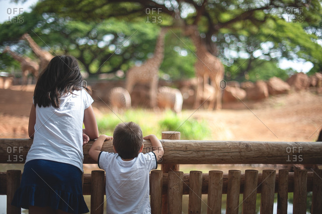 Brother and sister at zoo giraffe exhibit