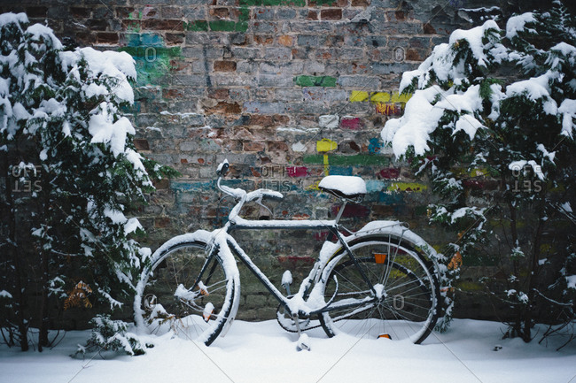 A snowed-in bike