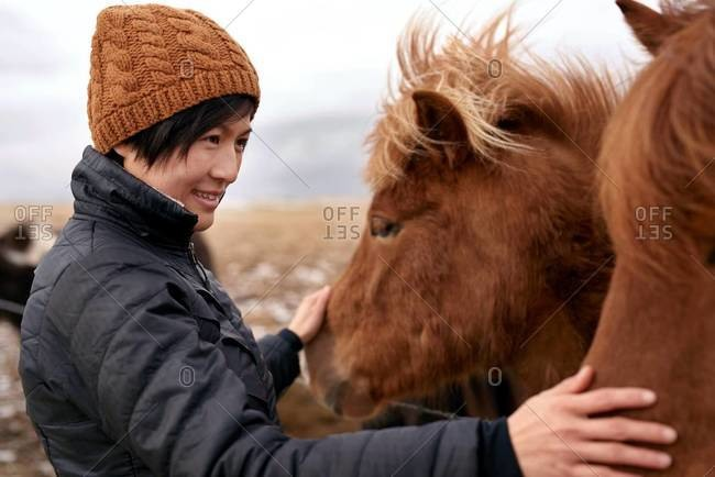 A woman petting domestic Icelandic horse in rural Iceland