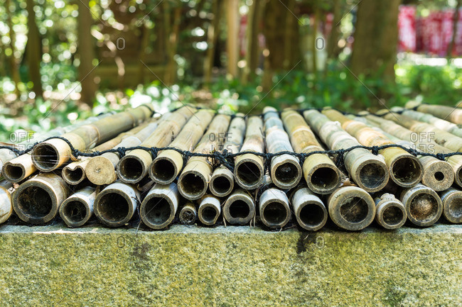 Bamboo poles in Akizuki, Japan