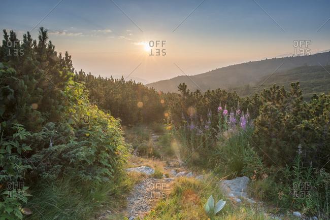 Sunrise, Rila mountain range - Offset