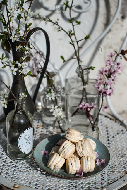 Macaroons and flowers on garden chair