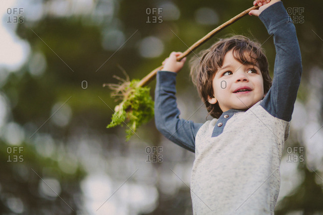 Boy holding up a branch in summer