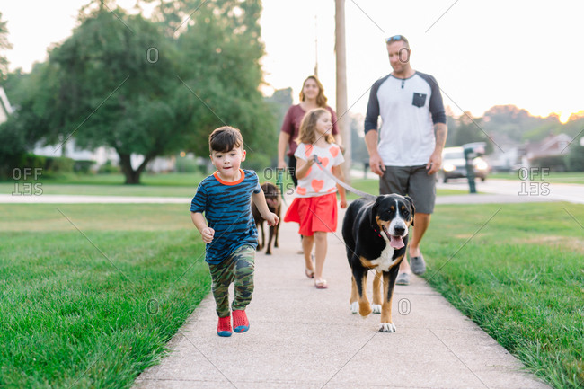 Family of four and dogs walking neighborhood stock photo ...