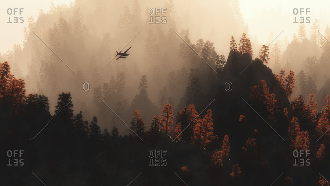 Airplane flying over pine trees in mist