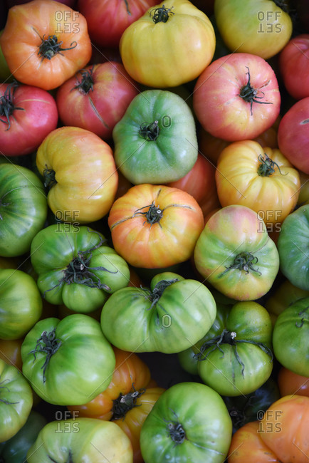 A pile of heirloom tomatoes