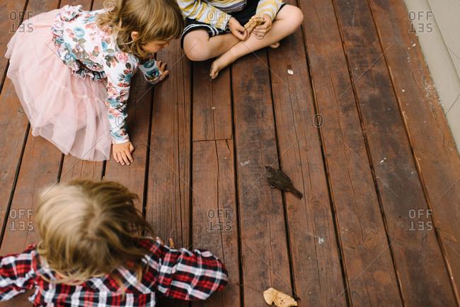Three children play with a bird on their porch